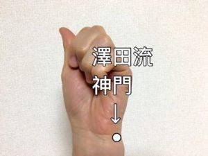 澤田流神門