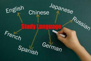 第二外国語 おすすめ